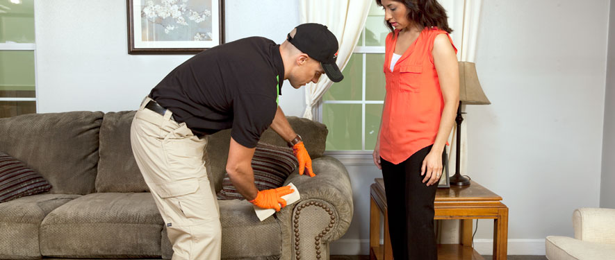 Albany, OR carpet upholstery cleaning